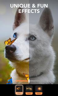 دانلود پیکسالوپ 1.3.7 Enlight Pixaloop Pro برنامه ساخت عکس متحرک اندروید