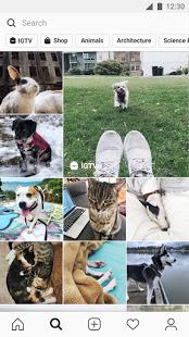 دانلود اینستاگرام جدید Instagram 199.0.0.0.52 برای اندروید